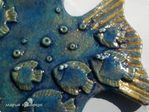 Вот и у меня уже есть Рыбка-мамочка(а может это и папочка...,не знаю, судить вам))  Правда извиняюсь за качество фото, но истинный цвет попытаюсь передать в других фотографиях: фото 3