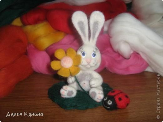 Мой второй зайчик!  фото 3