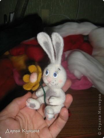 Мой второй зайчик!  фото 6