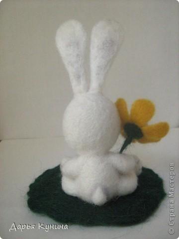 Мой второй зайчик!  фото 5