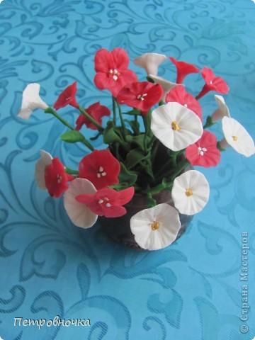 Вот еще одна роза в мой букет. фото 11