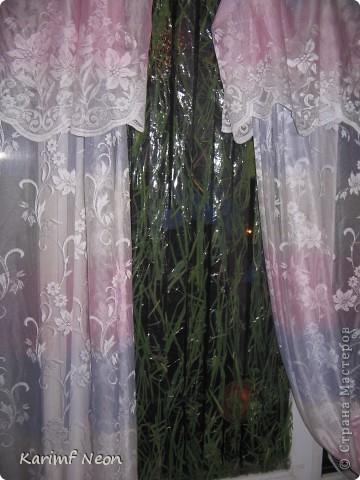 Прозрачный СКОТЧ и сухая трава. Всё, что нужно!!!!!! фото 1