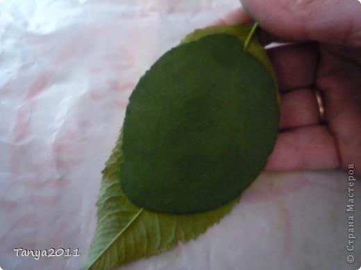 В маленьких городах не всегда можно купить специальные приспособления для изготовления листьев, стебельков. Поэтому приходится придумывать. Вот до чего додумалась я. Может, кому-то пригодится. фото 10