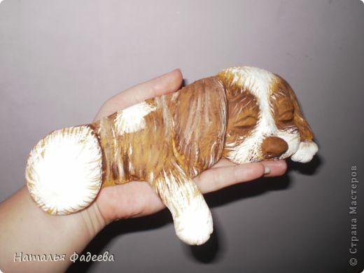 Увидела в Стране Мастеров такого щенка у Решенсковой Екатерины и вот вуаля, у меня такой же ! фото 3