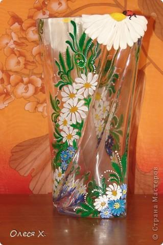 Вот, расписала на заказ первую вазу))) Честно говоря, было страшно, потому что никогда раньше этого не делала. Заказчица вроде осталась результатом довольна, она заказывала эту вазу для свекрови, а свекровь любит полевые цветы, вобщем надеюсь с дизайном я угадала, и ее свекрови все понравится)) Так что выставляю на ваш суд своего расписного первенца))) фото 6