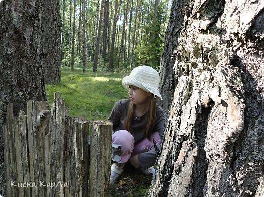 ... очень тепло и я всех приглашаю погулять со мной в лесу !!! фото 3