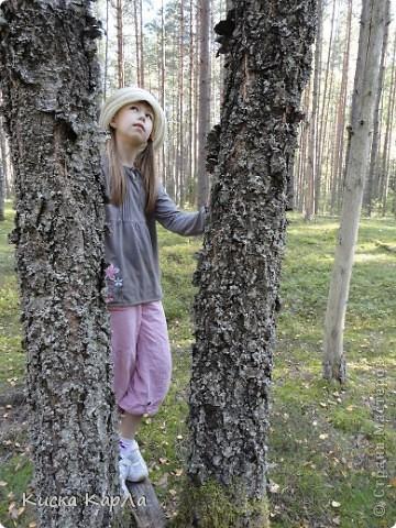 ... очень тепло и я всех приглашаю погулять со мной в лесу !!! фото 17