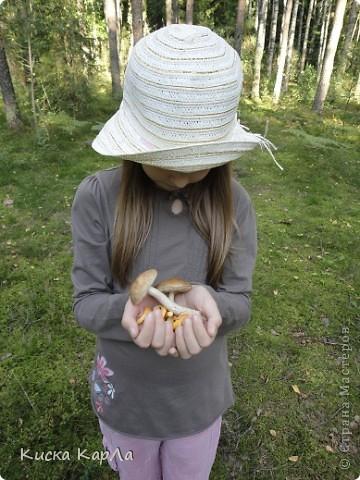... очень тепло и я всех приглашаю погулять со мной в лесу !!! фото 15
