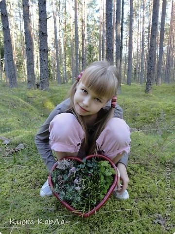 ... очень тепло и я всех приглашаю погулять со мной в лесу !!! фото 1