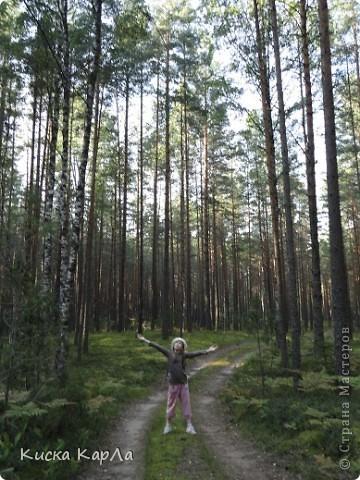 ... очень тепло и я всех приглашаю погулять со мной в лесу !!! фото 2