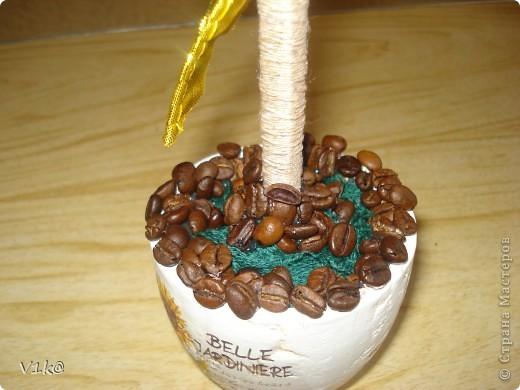 Наконец-то и у меня дошли руки до кофейных деревьев... Представляю на Ваш суд, дорогие Мастерицы, свои первые деревца :) фото 5