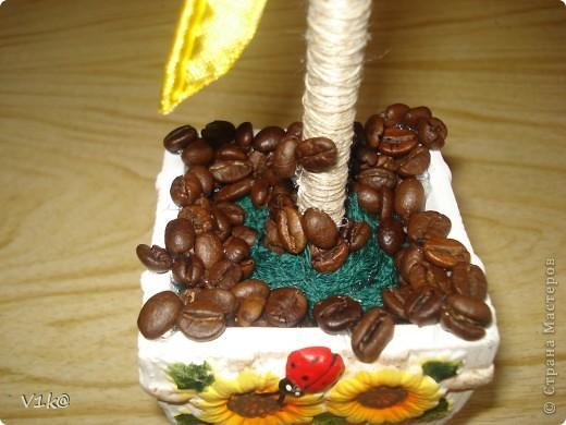 Наконец-то и у меня дошли руки до кофейных деревьев... Представляю на Ваш суд, дорогие Мастерицы, свои первые деревца :) фото 3
