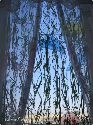 Прозрачный СКОТЧ и сухая трава. Всё, что нужно!!!!!! фото 8