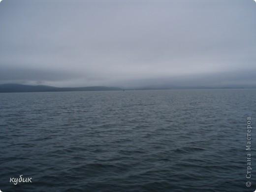 мы плавали на остров Путятин смотреть цветение лотоса и вот решила показать вам. фото 4