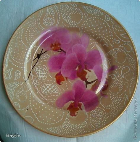 Орхидейное настроение. фото 1