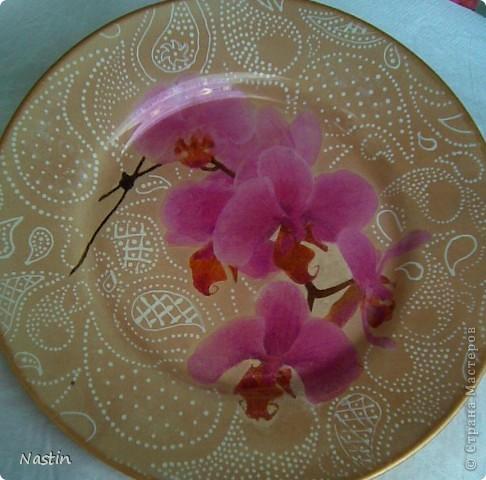 Орхидейное настроение. фото 3