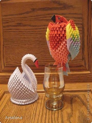 Два друга: поросёнок и цыпленок.   фото 4