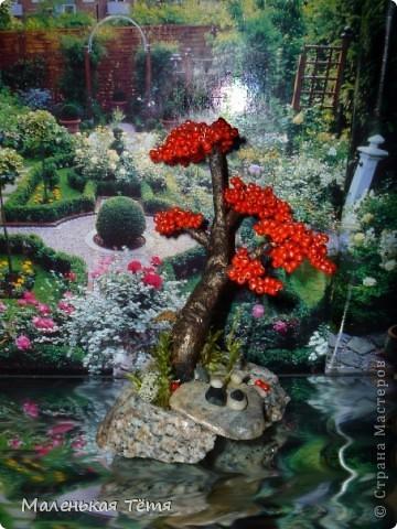 Деревца фото 10