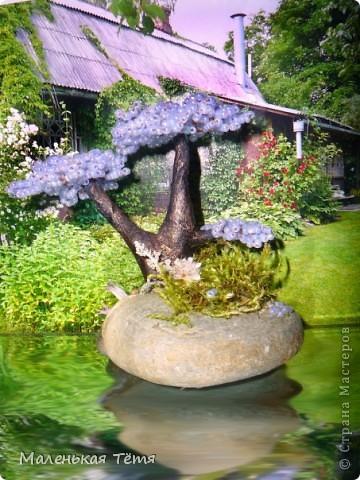Деревца фото 5