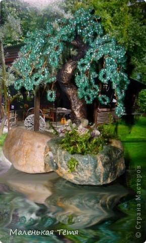 Деревца фото 9