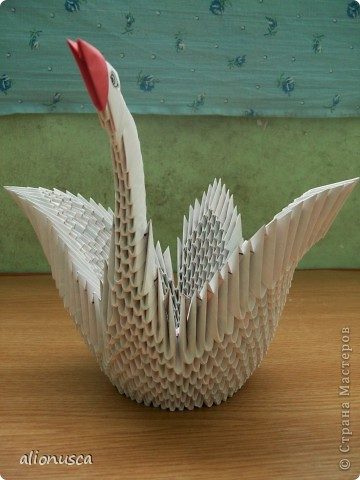белая лебедь фото 2
