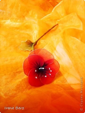Цветы из капрона фото 1