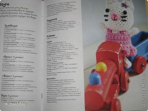 """Недавно прикупила одну интересную книжицу под названием """"Амигуруми. Живые игрушки"""". Ну, и решила попробовать связать себе киску... Получилась киска, но, правда, по мотивам...   фото 13"""