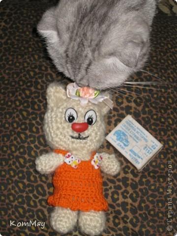 """Недавно прикупила одну интересную книжицу под названием """"Амигуруми. Живые игрушки"""". Ну, и решила попробовать связать себе киску... Получилась киска, но, правда, по мотивам...   фото 4"""