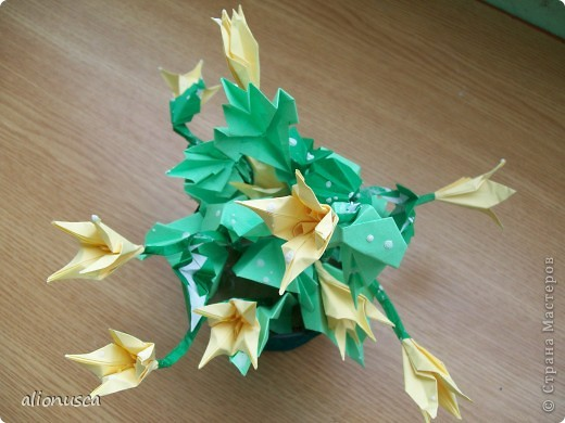Не знаю, как называть цветок, подскажите вы. фото 2