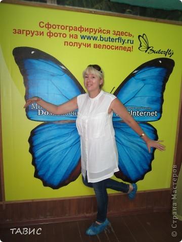 Как я была бабочкой или А мне летать, а мне летать охота!