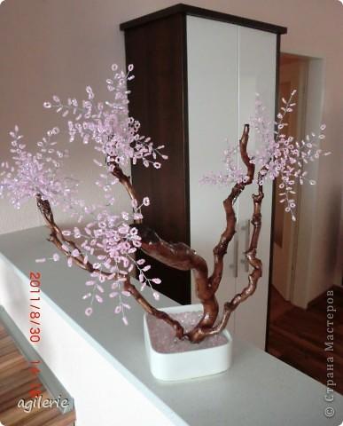 Вот и я хочю похвастаться своей работой)).Уж очень хотелось сделать это чюдестное дерево для себя! Люблю смотреть на его цветение!!!   Сакура сделана на основе натурального дерева(т.е его ствол).Вот такоя была моя идея!    Возможно кто-то уже делал подобное,но я на этом сайте такого не встречала. фото 1