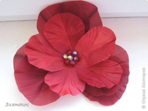 Мак, мак, красный мак.... Цветочек брошка для мамы (она у меня учитель физики) под красные туфли. фото 1