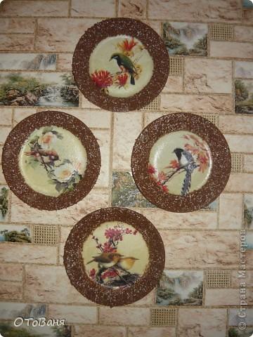 Вот такие птички поселились у меня на стене... фото 1