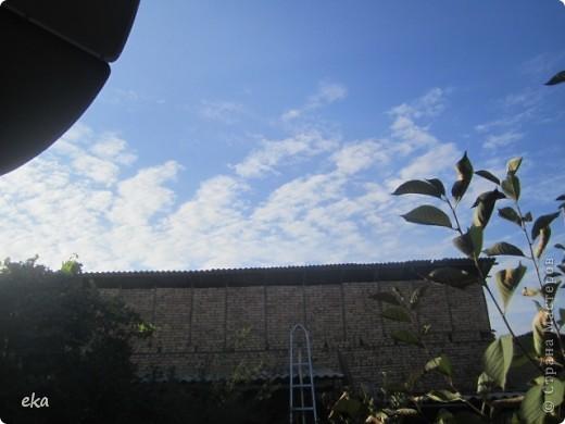 29 августа 2011 года весь день было облачно, прохладно. Вечером стало садиться солнце и началась вот такая красота в небе. фото 10