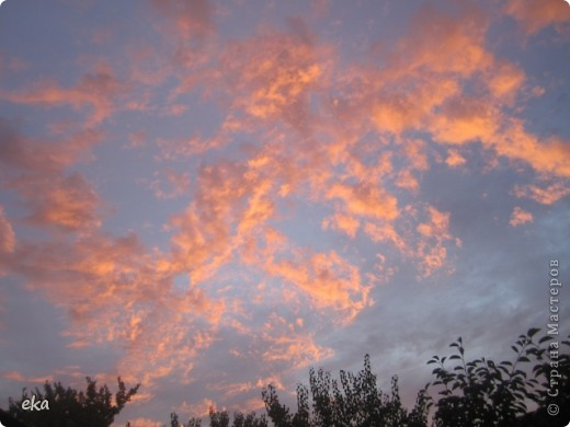 29 августа 2011 года весь день было облачно, прохладно. Вечером стало садиться солнце и началась вот такая красота в небе. фото 1