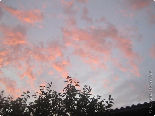 29 августа 2011 года весь день было облачно, прохладно. Вечером стало садиться солнце и началась вот такая красота в небе. фото 3