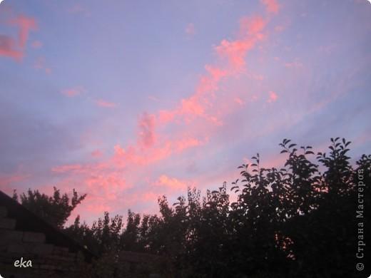 29 августа 2011 года весь день было облачно, прохладно. Вечером стало садиться солнце и началась вот такая красота в небе. фото 8