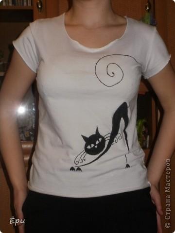 кошка, гуляющая сама по себе..) фото 3