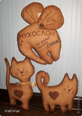 мои кофейные первинцы (повторюшка) фото 1