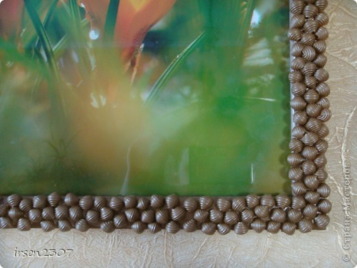 Макароны-ракушки фото 2