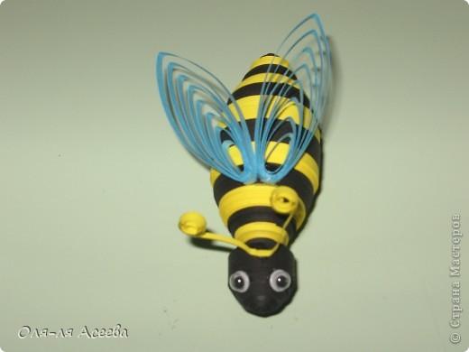 """Группа наша называется """"Пчелка"""", поэтому они у нас везде! фото 1"""