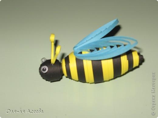 """Группа наша называется """"Пчелка"""", поэтому они у нас везде! фото 2"""