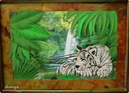 Здравствуйте! Очень давно мне не давал покоя леопард Saphir, так хотелось сделать что-то подобное. И вот... выставляю на суд жителей Страны своего тигра.  фото 4