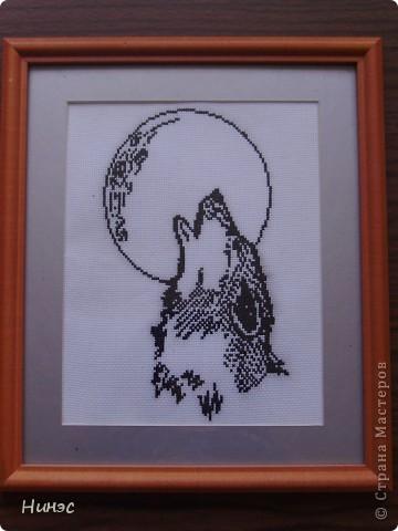 """""""Волк и луна"""""""