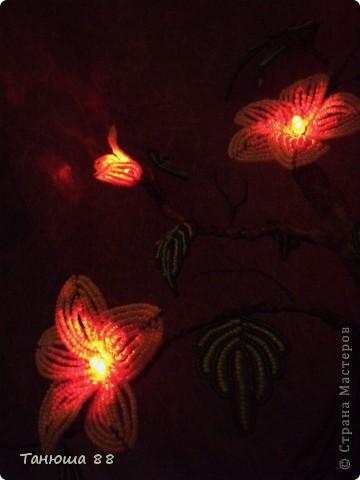 Бонсай- светильник-ночничок фото 5