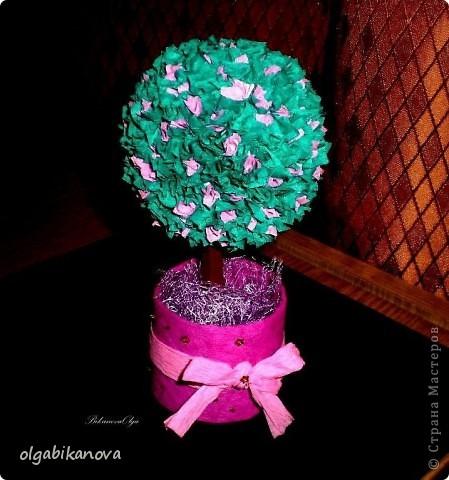 """""""Европейское дерево"""" (дерево счастья) фото 2"""