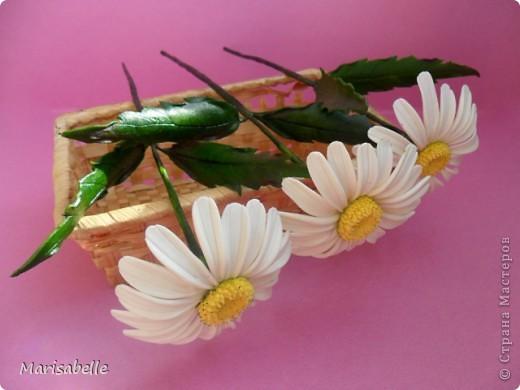 Еще пробую лепить ромашки - вроде совершенствуюсь, пытаюсь сделать их все живее... фото 5