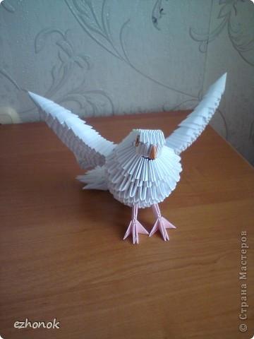 Птица мира: оригами голубь,