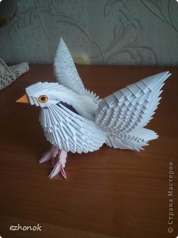 Модульно оригами из бумаги голубь