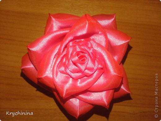 Новые цветочки для любимой дочке фото 4